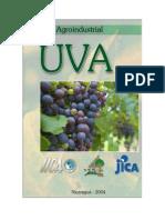 Cadena Uva