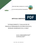PPM-BRUNAS - Consolidado 2004