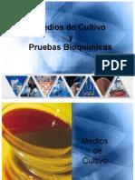 Medios de Cultivo y Pruebas Bioquimica 1225658128608610 9
