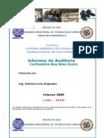 Informe Auditoria Ambiental Curtiembre