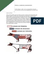 CLASIFICACIÓN DE LA CARNE DE GANADO BOVINO.docx