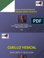 Incontinencia+urinaria+V+año