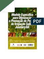 POLITICAS E ESTRATEGIAS PARA UM NOVO MODELO de IRRIGACAO - VOLUME 4 - Modelo Especifico Para Otimizacao e Promocao Do Projeto de Irrigacao Salitre Juazeiro-BA