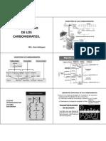 Diapositivas de Metabolismo de Los Carbohidratos (Version Imprimible)