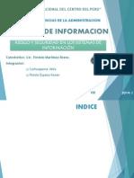 Riesgo y Seguridad en Los Sistemas de Informacion