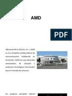 AMD - final