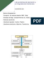 biologia celular - clase 06
