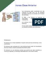 biologia celular - clase 10