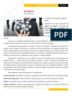 O Dono do Meu Projeto.pdf