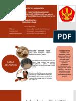 PKM-P_MULYANI.pptx