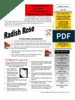 2007 04 April - CorporateFAInsider Newsletter