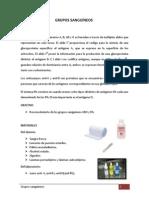 INFORME DE BIOLOGIA N°13-GRUPOS SANGUÍNEOS