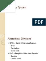 HLA7- Nervous SyStem