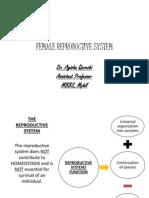 Female Reproductive System PDF