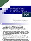 TS02_P._FUNCION_RENAL1