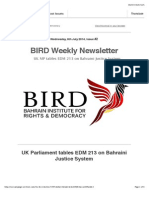 BIRD Newsletter - Issue #2