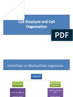 Cell Structure3