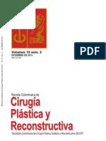 Cirugía Plastica y Reconstructiva Volumen 19 No 2 Diciembre 2013