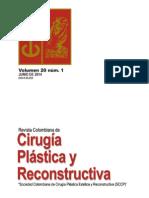 Cirugia Plastica y Reconstructiva Volumen 20 Nº 1 Junio 2014