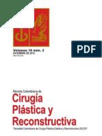 Cirugía Plástica y Reconstructiva Volumen-18-Nº-2 Diciembre 2012