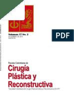 Cirugía Plastica y Reconstructiva Volumen-17-No2-Diciembre 2011