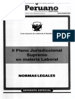 II Pleno Jurisdiccional CSJ