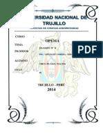 SEGUNDO EXAMEN  OPEMA 2014 - CHICO PICASSO WALTER.pdf