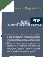 23524627-potenciales-magneticos