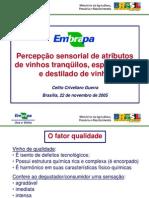 Dr Celito - Degustaçao de Vinhos