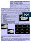 Spiral Computed Tomography (SCT) study to validate Digital Radiographic Imaging (DRI) in Canis lupus skulls from Italian south-central Apennines