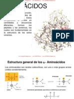 Aminoácidos y Proteínas-bioquímica (Nxpowerlite)