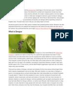 Dengue Papaya