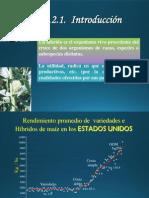 hibridos MAIZ.pdf