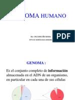 Genoma_2008