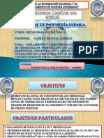Aislamiento y Caracterizacion de Cepas Dee Thiobacilius Ferroxidans