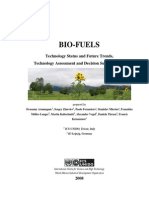 ICS UNIDO - Biofuels Technology, Status and Future Trends