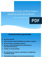 Morfologia de Hongos