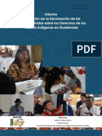 INFORME PUEBLOS INDIGENAS ONU.pdf