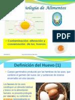 07-Contaminacion Alteracion de Huevos 03-10-12