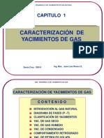 Caracterizacion de Yac. de Gas-F.a.P.