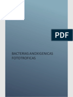 Bacterias Fototroficas Anoxigénicas