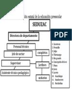 organizacion estatal