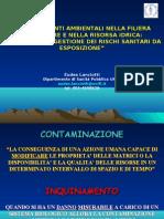 Introd_ValGestXenobio_Lanc_OK_09