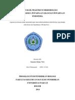 laporan endospora