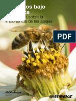 testimonios abejas