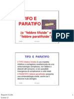 tifo e paratifo_Lanciotti08
