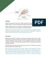 Epiglotitis akut