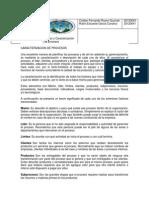 Caracterizacion y Mapeo de Procesos