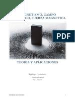 Informe Magnetismo Final