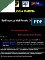 9.- Sedimentos Del Fondo Oceanico